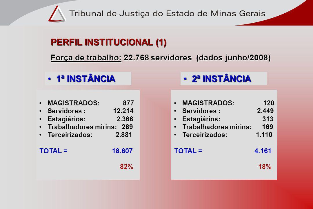PERFIL INSTITUCIONAL (1)