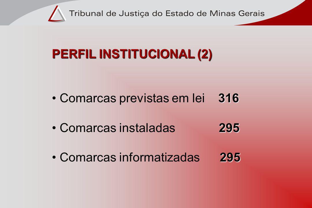 PERFIL INSTITUCIONAL (2)