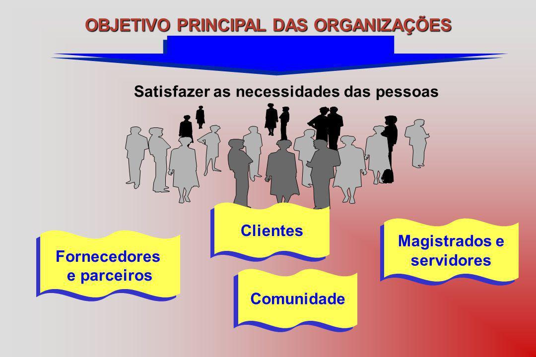 OBJETIVO PRINCIPAL DAS ORGANIZAÇÕES