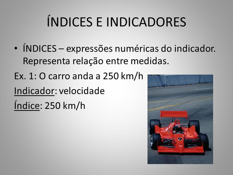 ÍNDICES E INDICADORES ÍNDICES – expressões numéricas do indicador. Representa relação entre medidas.