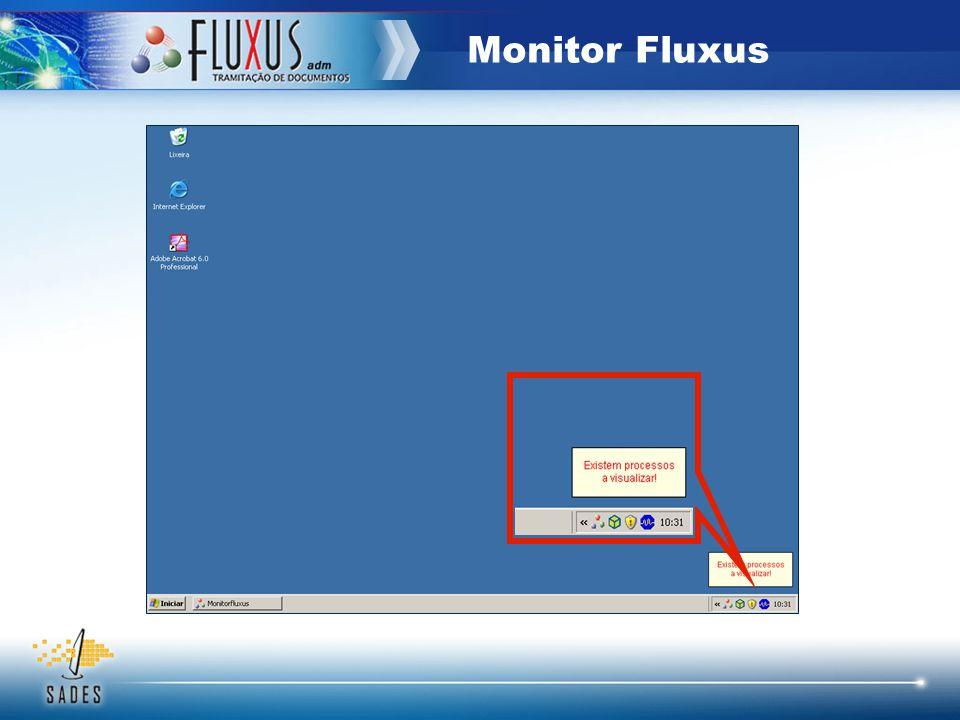 Monitor Fluxus