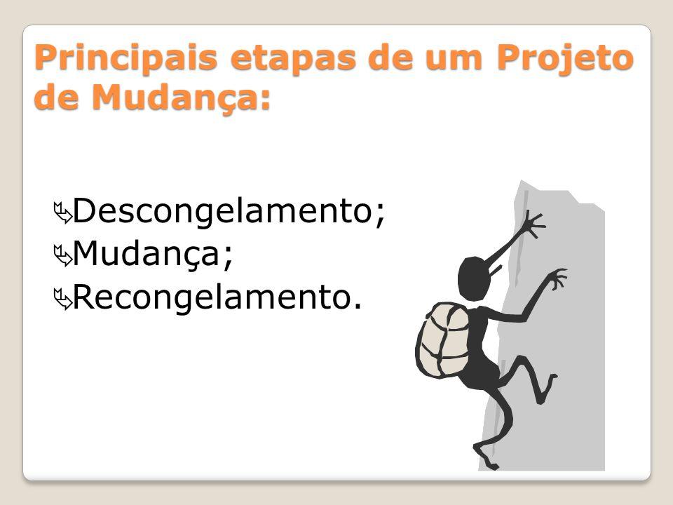 Principais etapas de um Projeto de Mudança: