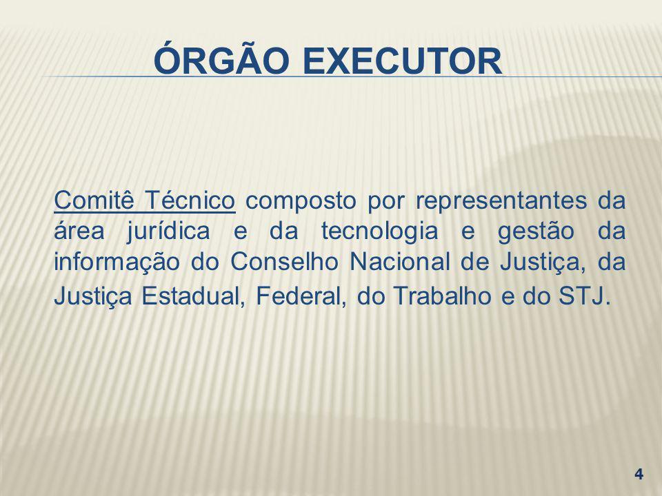 ÓRGÃO EXECUTOR
