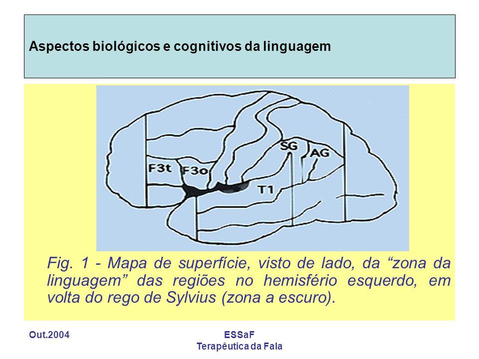 Aspectos biológicos e cognitivos da linguagem