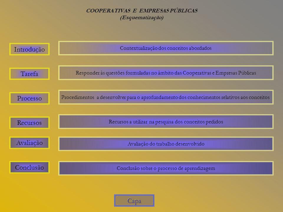 COOPERATIVAS E EMPRESAS PÚBLICAS (Esquematização)