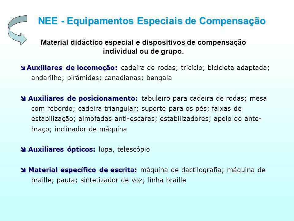 NEE - Equipamentos Especiais de Compensação