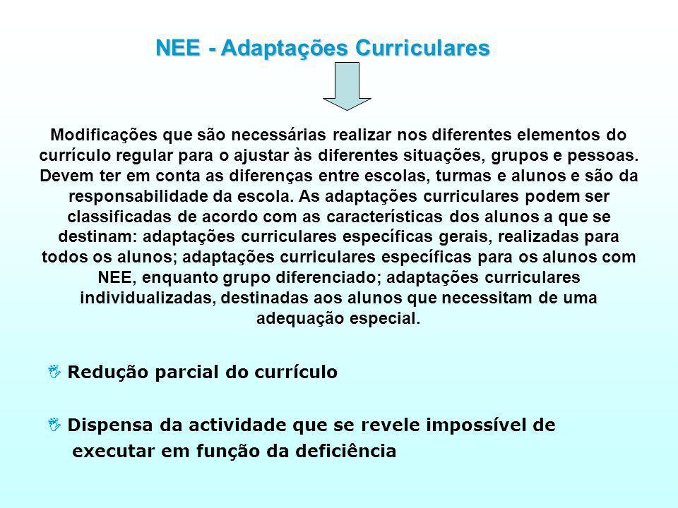 NEE - Adaptações Curriculares