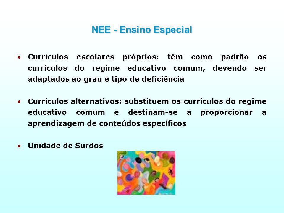 NEE - Ensino Especial
