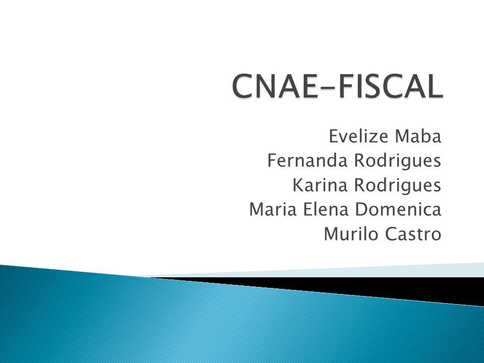 CNAE-FISCAL Evelize Maba Fernanda Rodrigues Karina Rodrigues