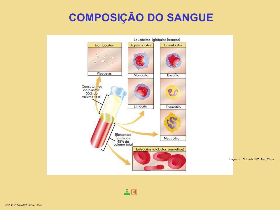 COMPOSIÇÃO DO SANGUE Imagem in Diciopédia 2005 Porto Editora