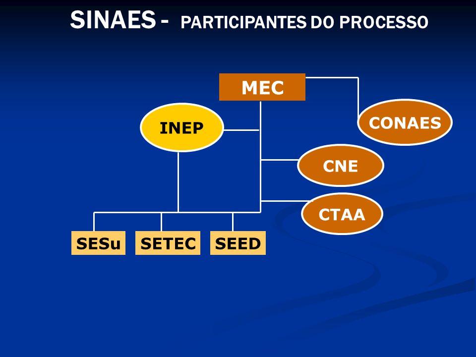 SINAES - PARTICIPANTES DO PROCESSO