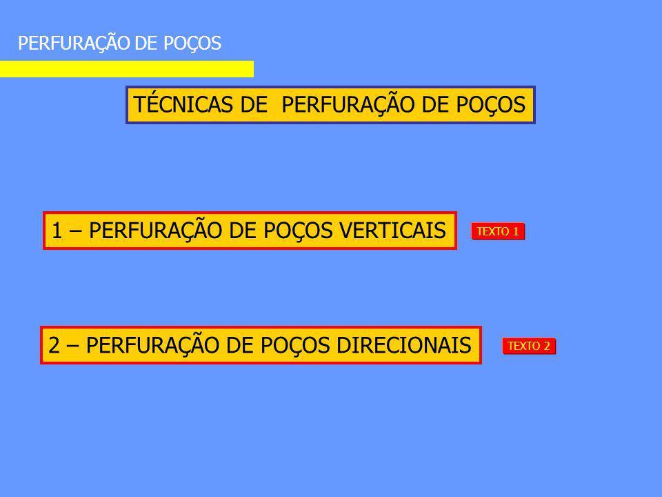 TÉCNICAS DE PERFURAÇÃO DE POÇOS