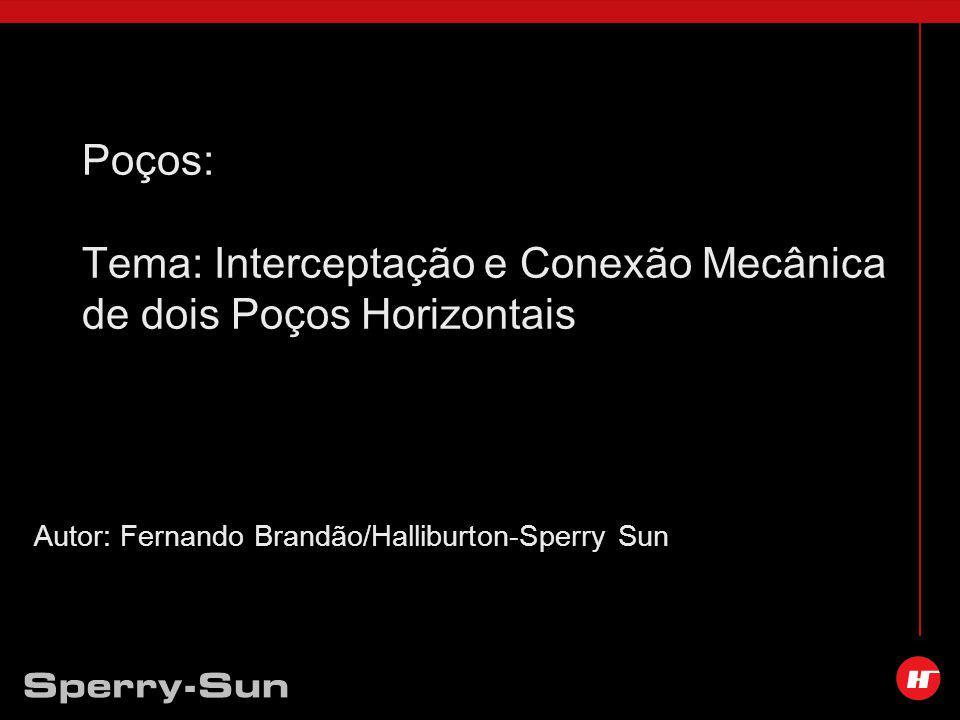 Autor: Fernando Brandão/Halliburton-Sperry Sun