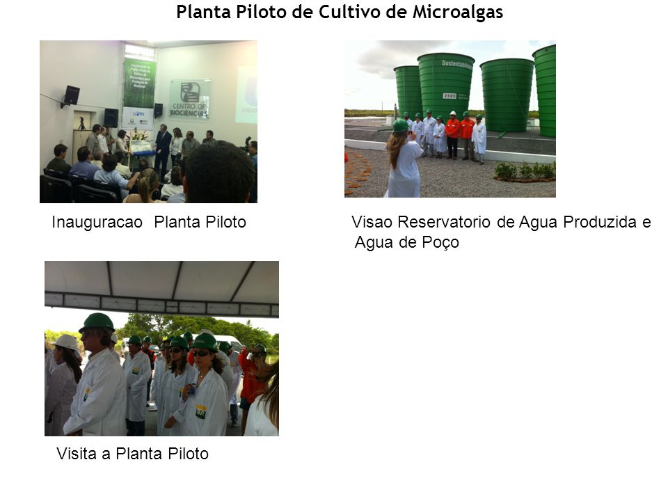 Planta Piloto de Cultivo de Microalgas