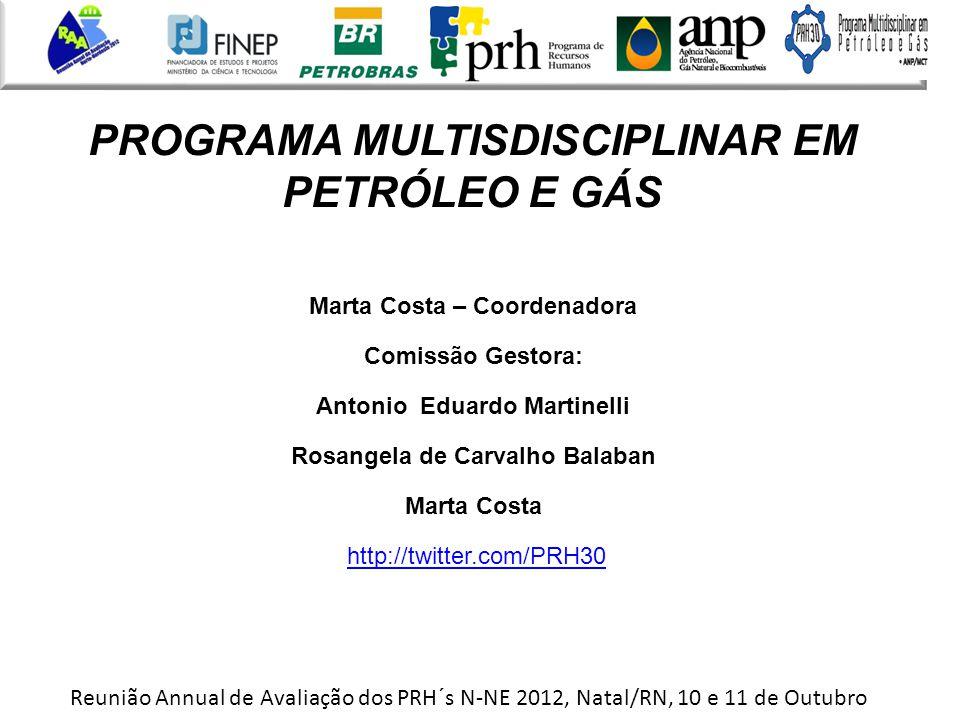 PROGRAMA MULTISDISCIPLINAR EM PETRÓLEO E GÁS