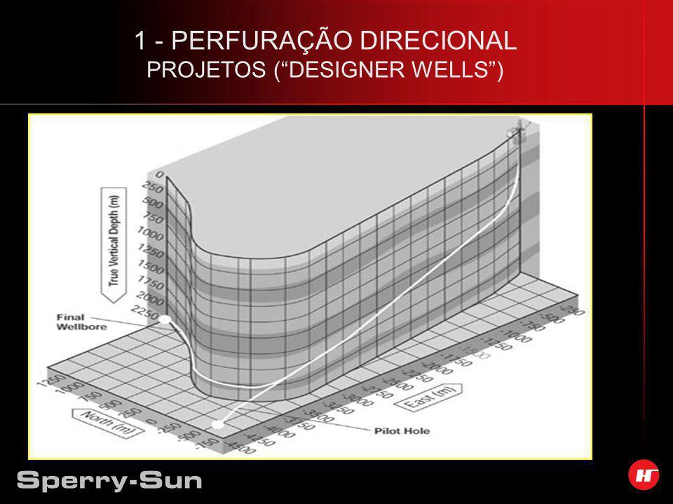 1 - PERFURAÇÃO DIRECIONAL PROJETOS ( DESIGNER WELLS )