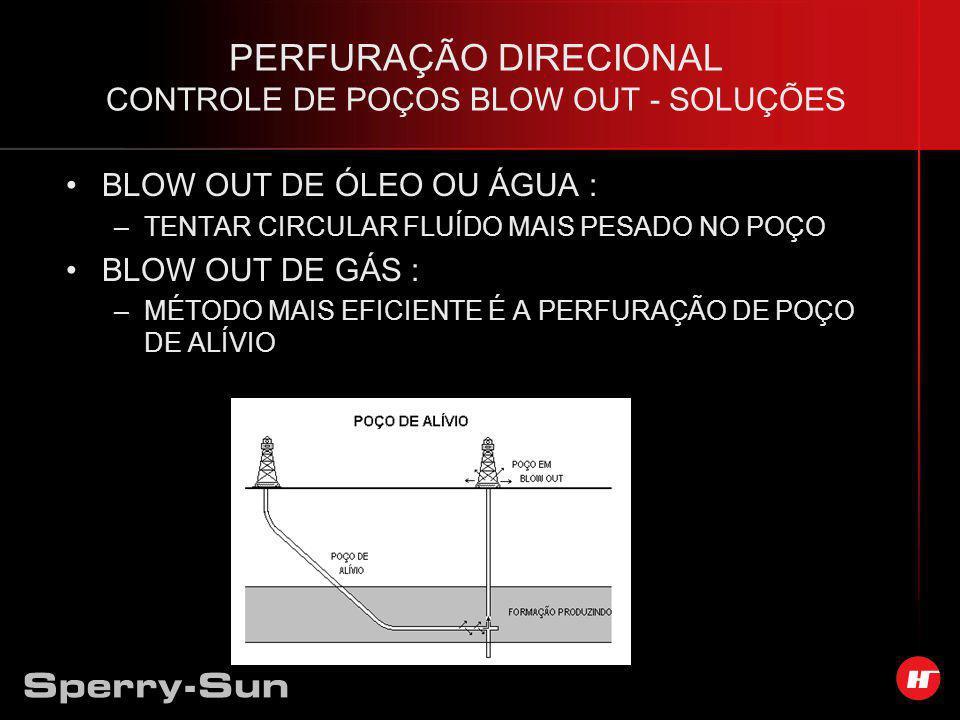 PERFURAÇÃO DIRECIONAL CONTROLE DE POÇOS BLOW OUT - SOLUÇÕES