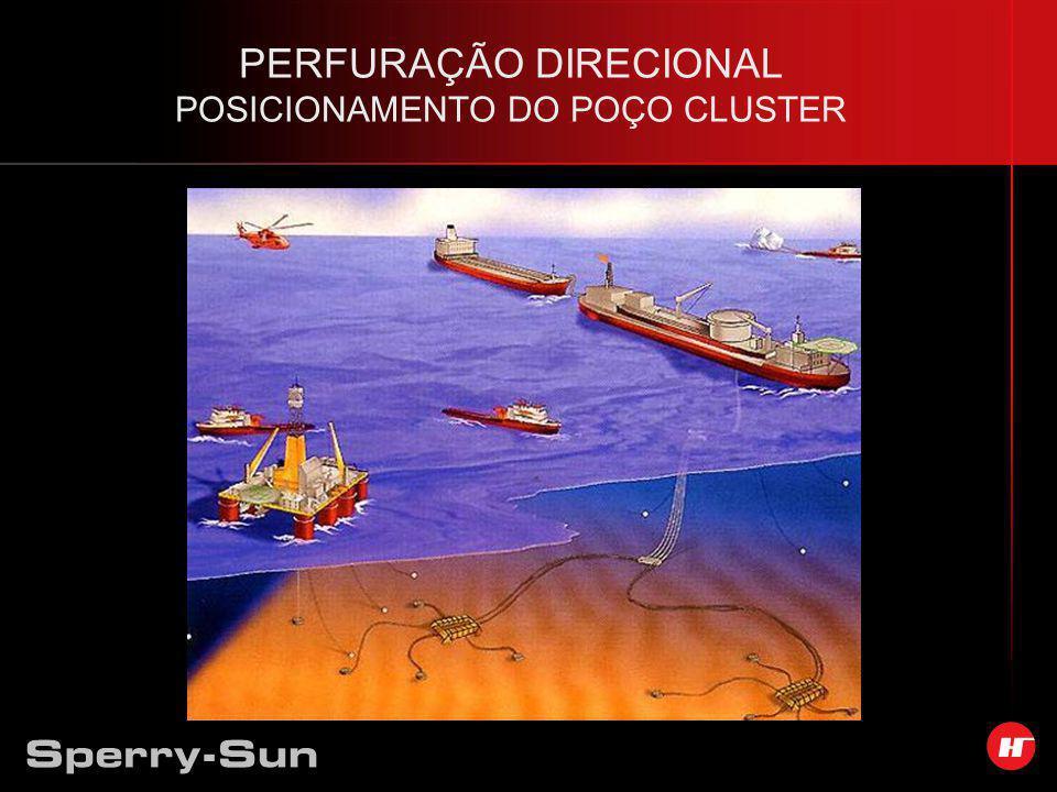 PERFURAÇÃO DIRECIONAL POSICIONAMENTO DO POÇO CLUSTER