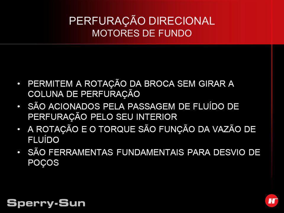 PERFURAÇÃO DIRECIONAL MOTORES DE FUNDO