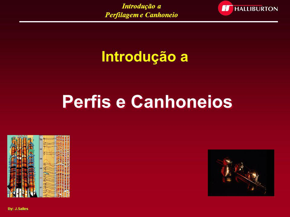 Introdução a Perfis e Canhoneios
