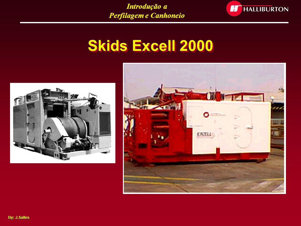 Skids Excell 2000