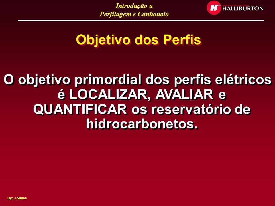 Objetivo dos Perfis O objetivo primordial dos perfis elétricos é LOCALIZAR, AVALIAR e QUANTIFICAR os reservatório de hidrocarbonetos.