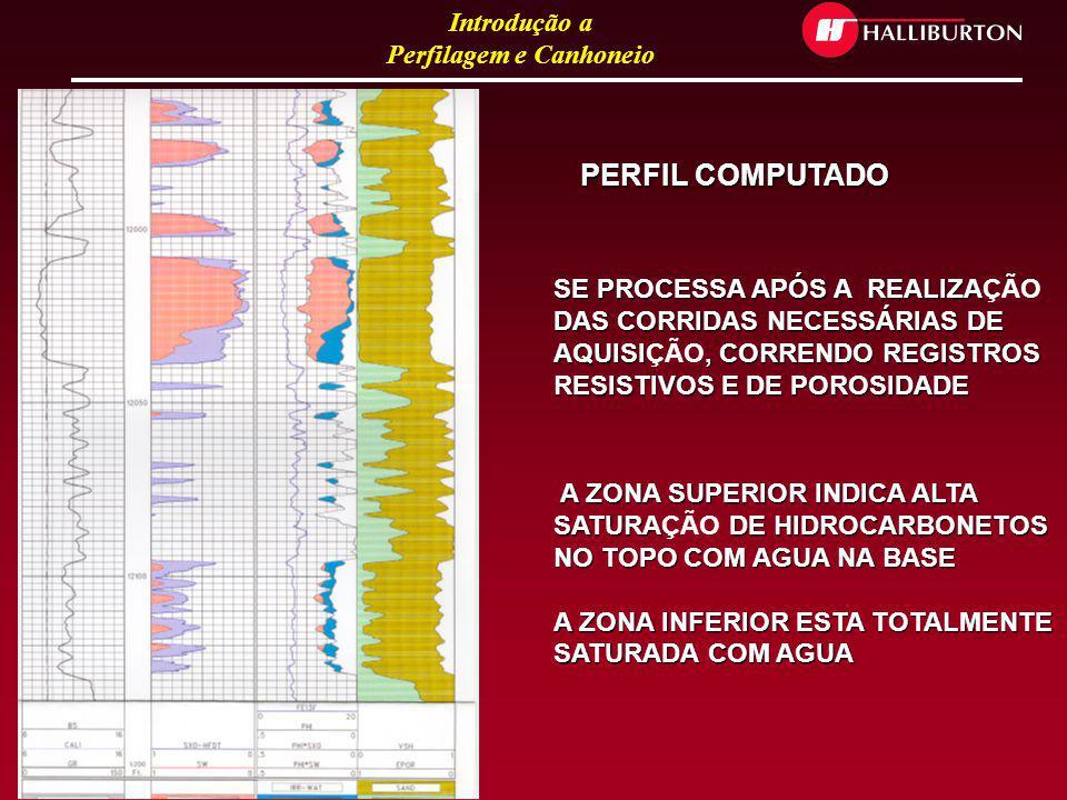 PERFIL COMPUTADO SE PROCESSA APÓS A REALIZAÇÃO DAS CORRIDAS NECESSÁRIAS DE AQUISIÇÃO, CORRENDO REGISTROS RESISTIVOS E DE POROSIDADE.