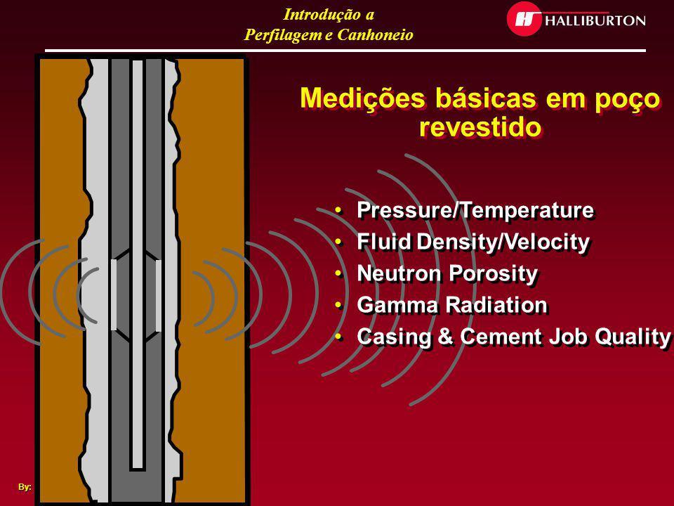 Medições básicas em poço revestido