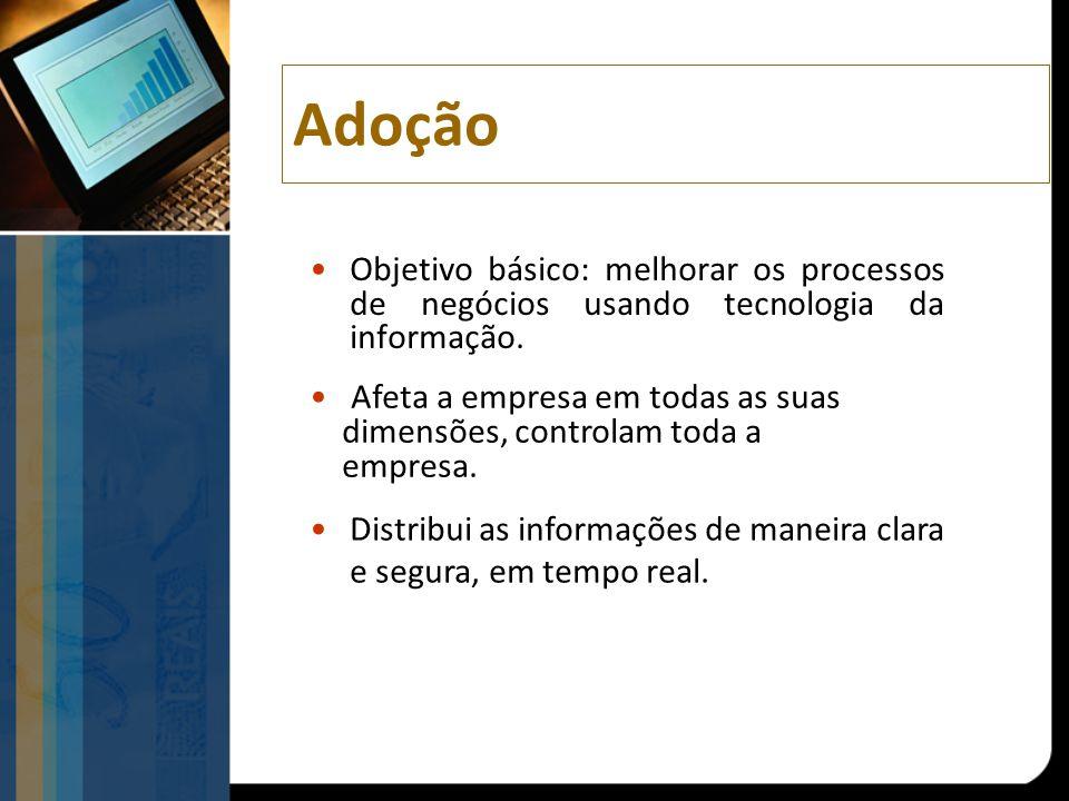 Adoção Objetivo básico: melhorar os processos de negócios usando tecnologia da informação. Afeta a empresa em todas as suas.
