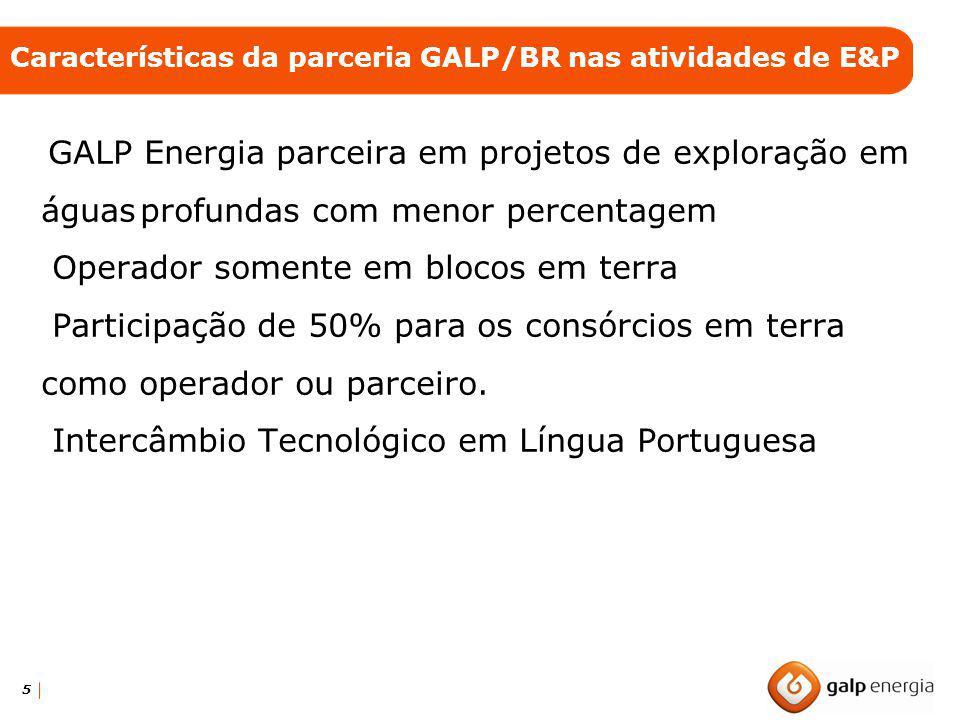 Características da parceria GALP/BR nas atividades de E&P