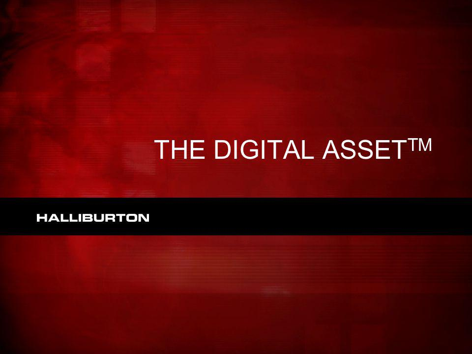 THE DIGITAL ASSETTM