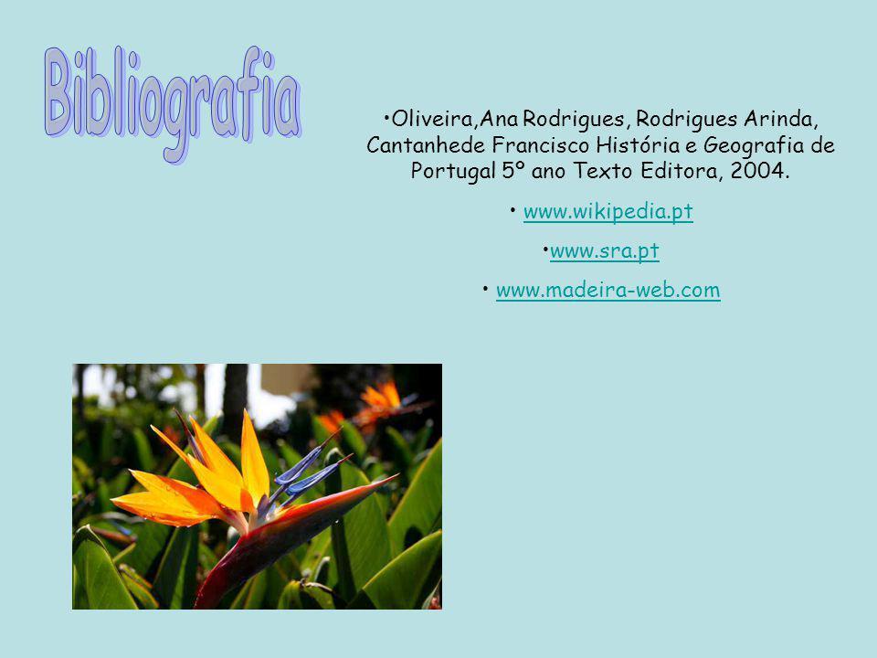 Bibliografia Oliveira,Ana Rodrigues, Rodrigues Arinda, Cantanhede Francisco História e Geografia de Portugal 5º ano Texto Editora, 2004.