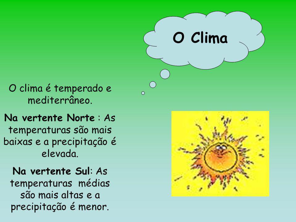 O clima é temperado e mediterrâneo.