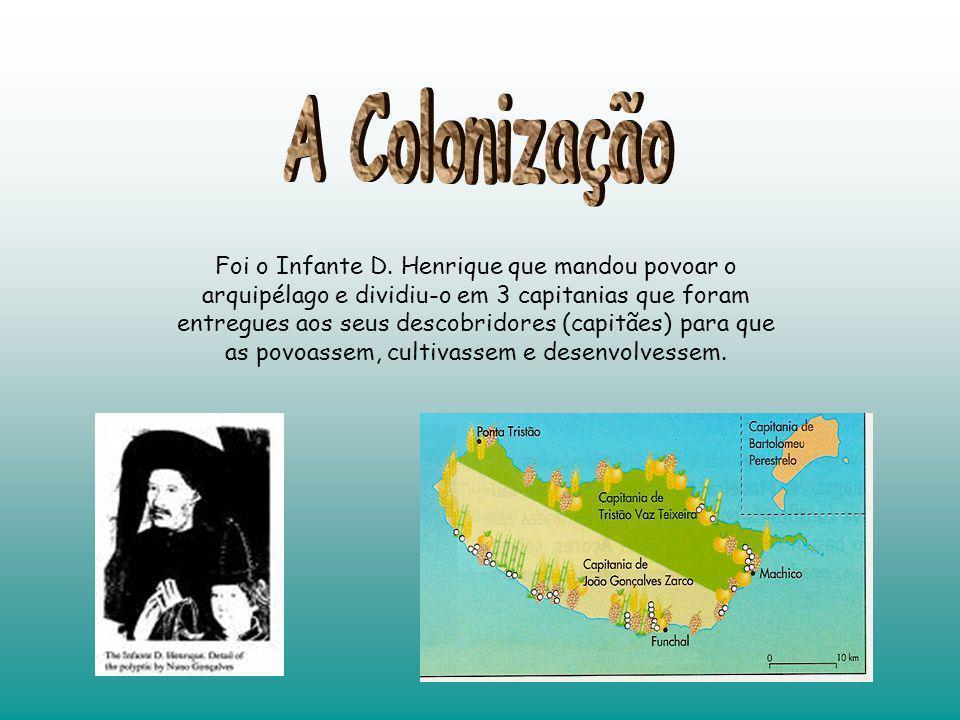 A Colonização