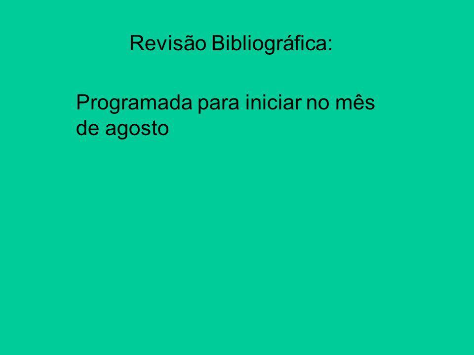Revisão Bibliográfica: