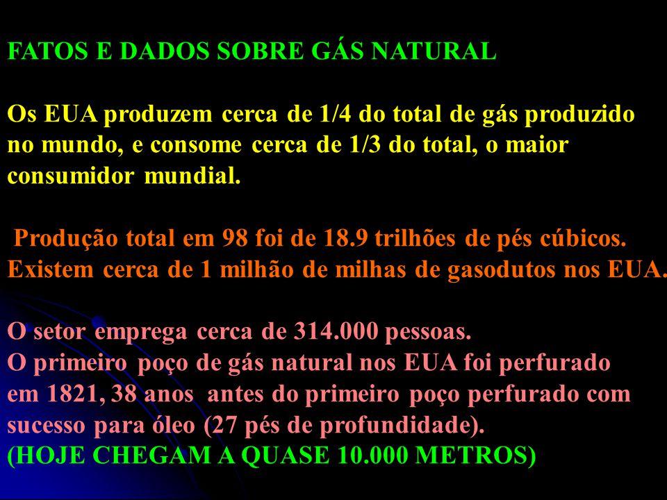 FATOS E DADOS SOBRE GÁS NATURAL