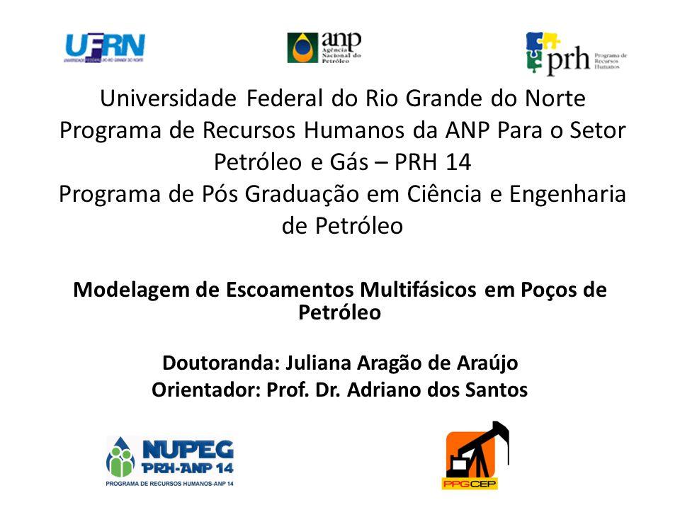 Universidade Federal do Rio Grande do Norte Programa de Recursos Humanos da ANP Para o Setor Petróleo e Gás – PRH 14 Programa de Pós Graduação em Ciência e Engenharia de Petróleo