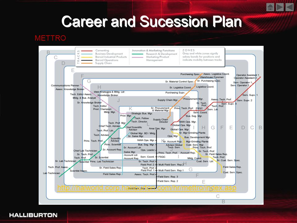 Career and Sucession Plan