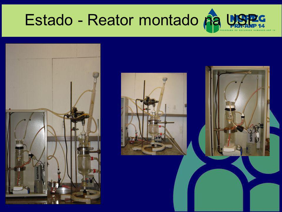Estado - Reator montado na USP