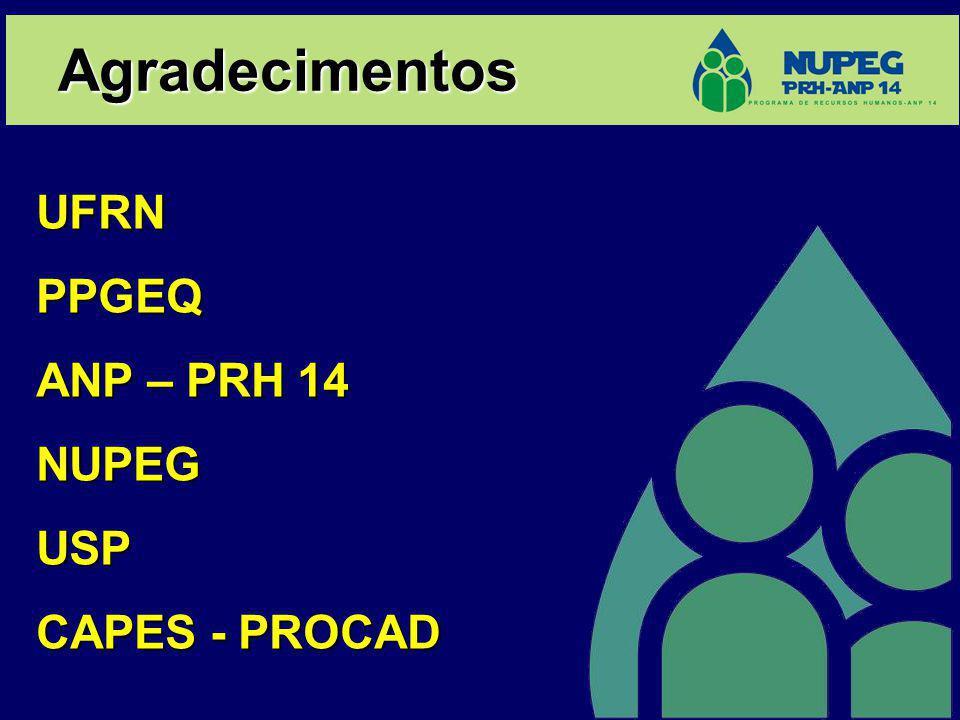 Agradecimentos UFRN PPGEQ ANP – PRH 14 NUPEG USP CAPES - PROCAD