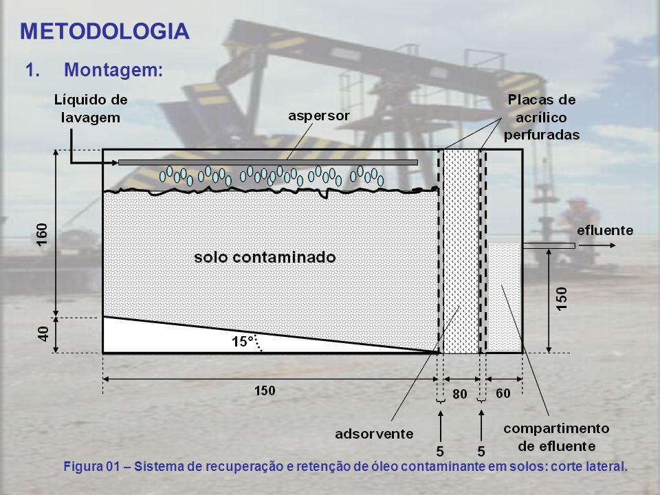 METODOLOGIA Montagem: