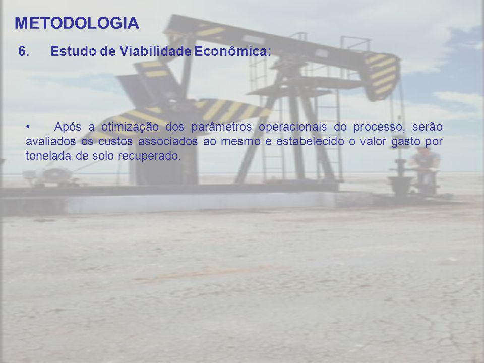 METODOLOGIA Estudo de Viabilidade Econômica: