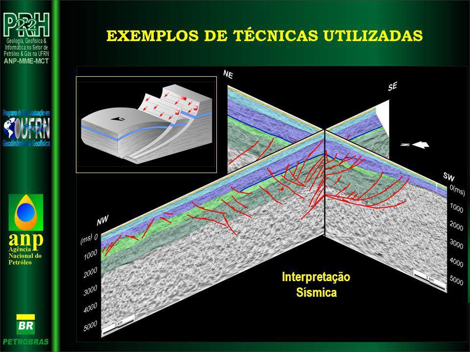 EXEMPLOS DE TÉCNICAS UTILIZADAS Interpretação Sísmica