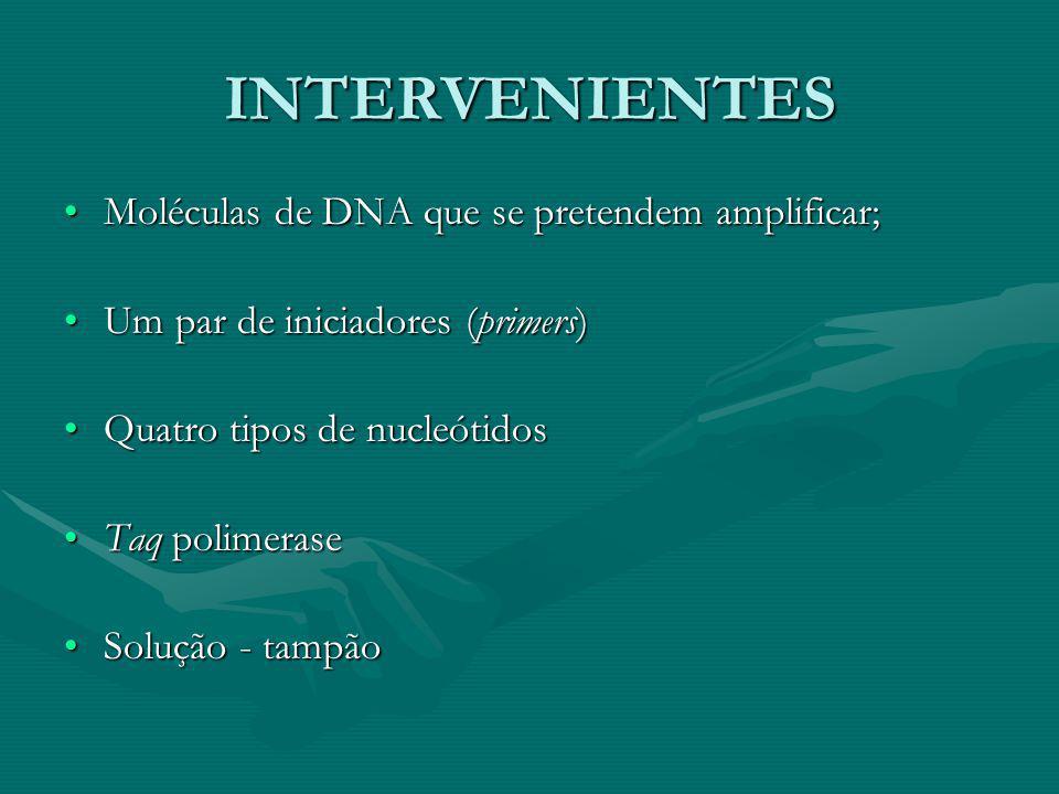 INTERVENIENTES Moléculas de DNA que se pretendem amplificar;
