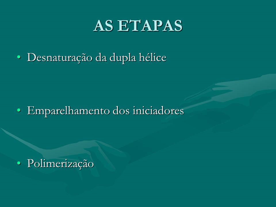 AS ETAPAS Desnaturação da dupla hélice Emparelhamento dos iniciadores