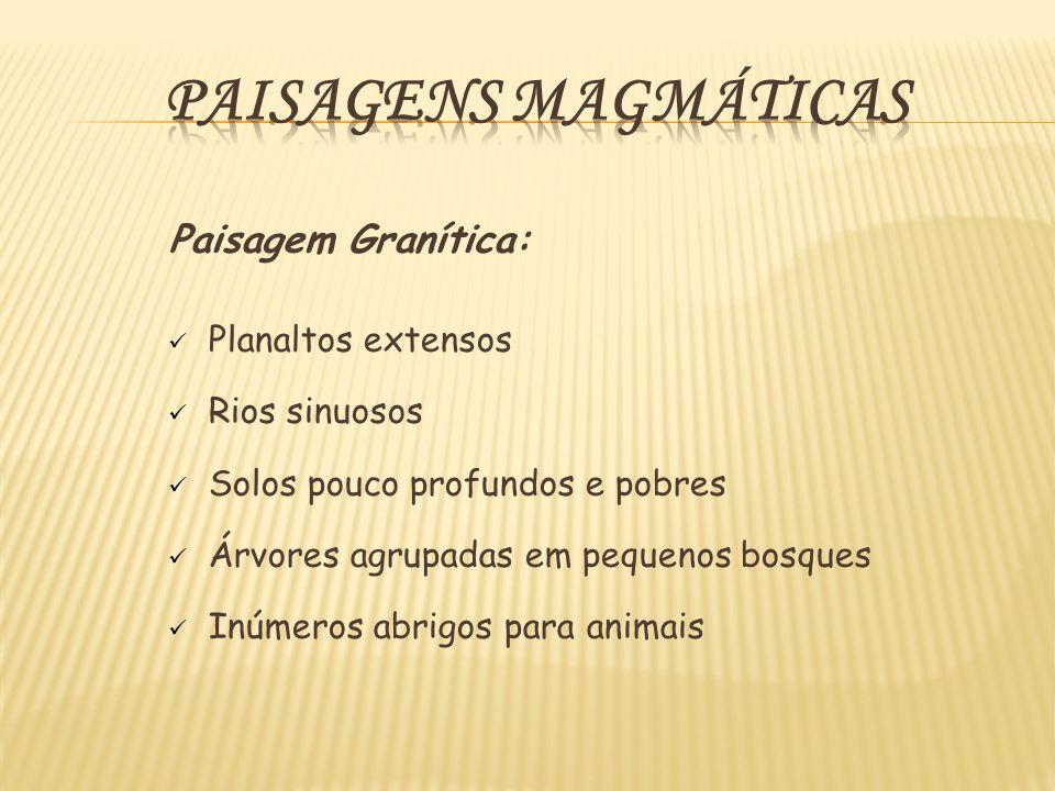 Paisagens Magmáticas Paisagem Granítica: Planaltos extensos