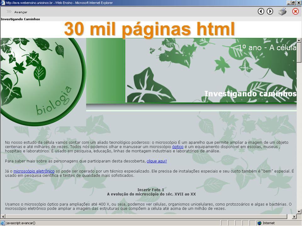 30 mil páginas html