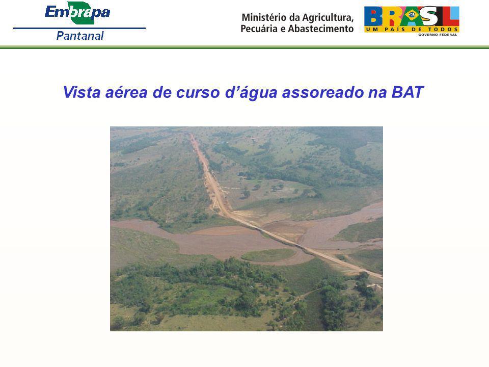Vista aérea de curso d'água assoreado na BAT