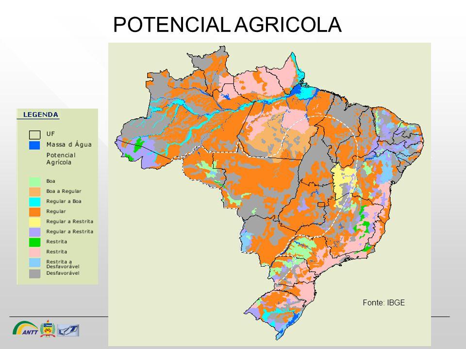 POTENCIAL AGRICOLA Fonte: IBGE