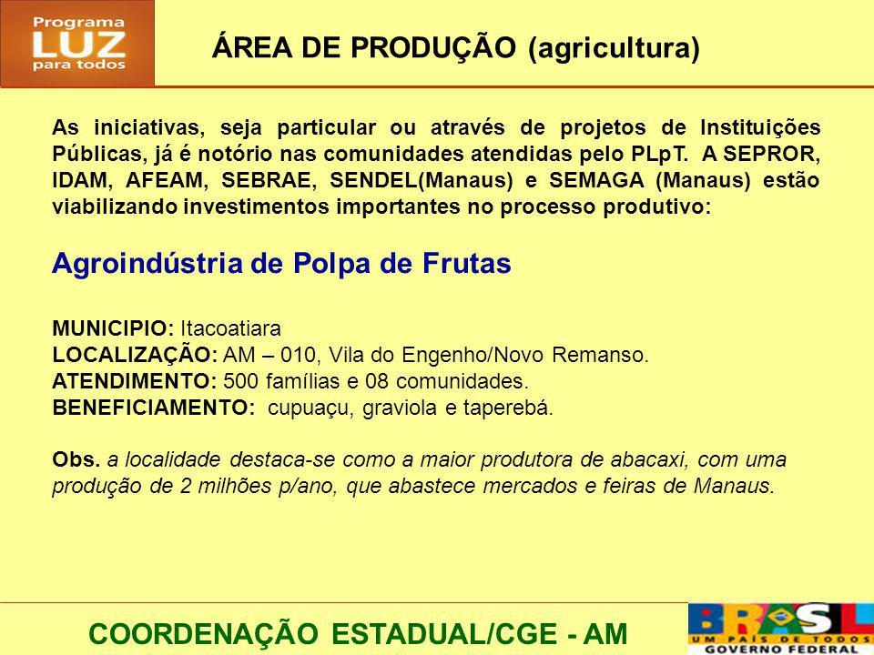 ÁREA DE PRODUÇÃO (agricultura)